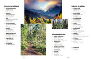 Waldwunder