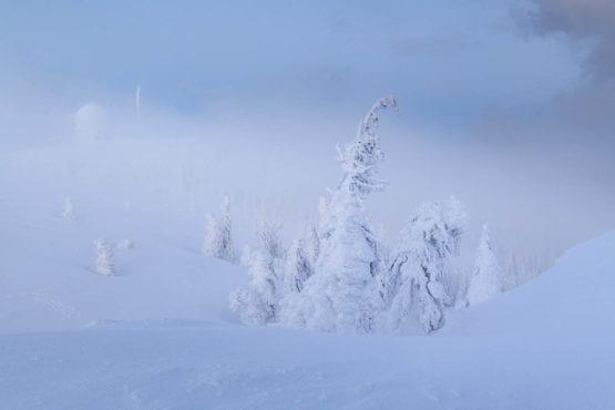 Winterzauber - doe37328